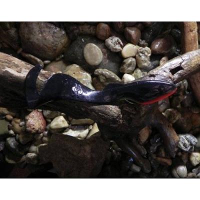 Orka shad tail 21cm B