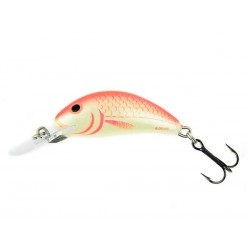 Wobler Salmo Hornet 2S Holographic Roach