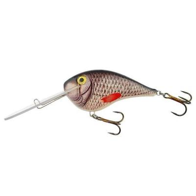 Bielik Catfish 10cm barva 4