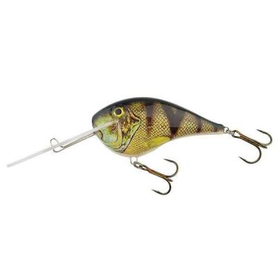 Bielik Catfish 10cm barva 3